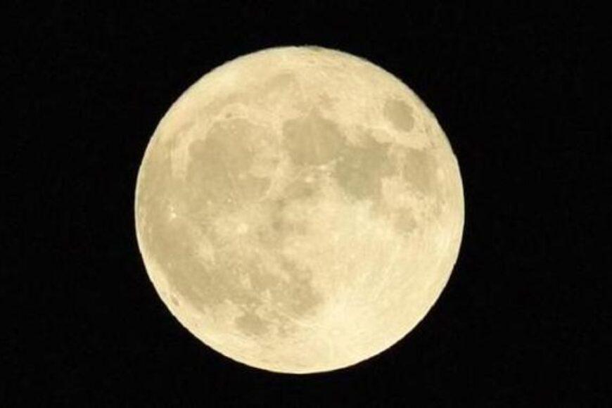 La Luna y el Cultivo