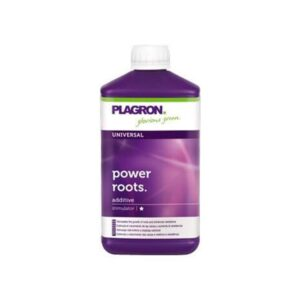 Plagron power root