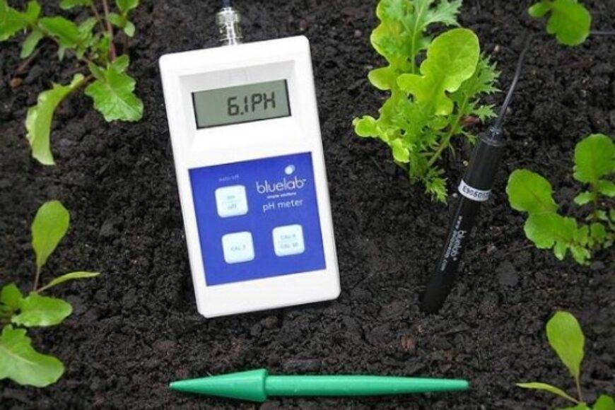 La importancia del pH en suelo y agua para los cultivos